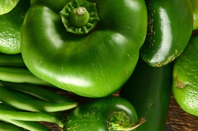 blog-green